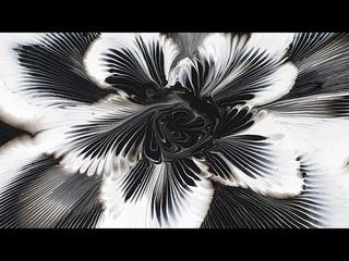 (172) Chain pull _ Snow Flower _ Black & White _ Acrylic Pouring _ Fluid acrylic _ Designer Gemma77