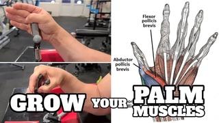 """Тренировка мышц кисти с целью их увеличения для получения преимущества в виде """"неудобной"""" кисти."""
