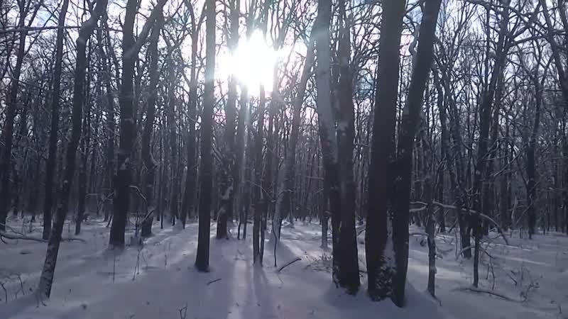1.Andrew Wagner-Retrospektive (Old-White winter day)
