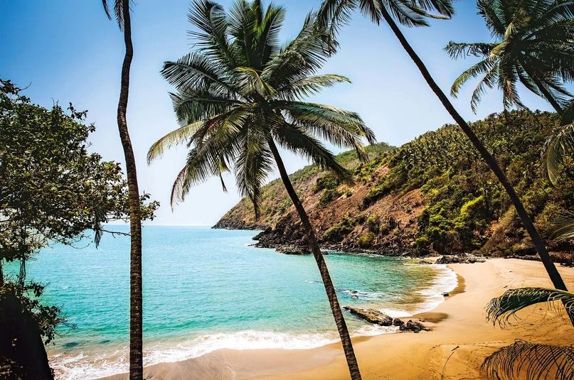 Лучшие пляжные туры декабря, изображение №3