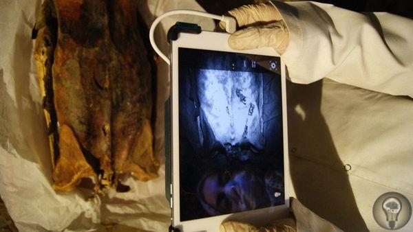 На египетских мумиях нашли загадочные невидимые татуировки