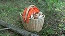 Какой должна быть плетеная корзина грибника Советы по выбору грибной корзины