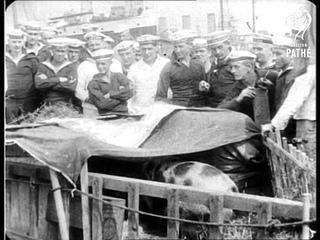 Interned German Liners (1916)
