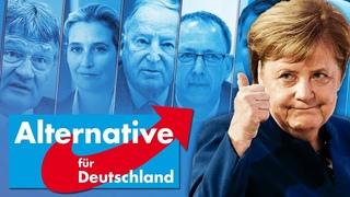 AfD - Die heimliche Liebe Deutschlands