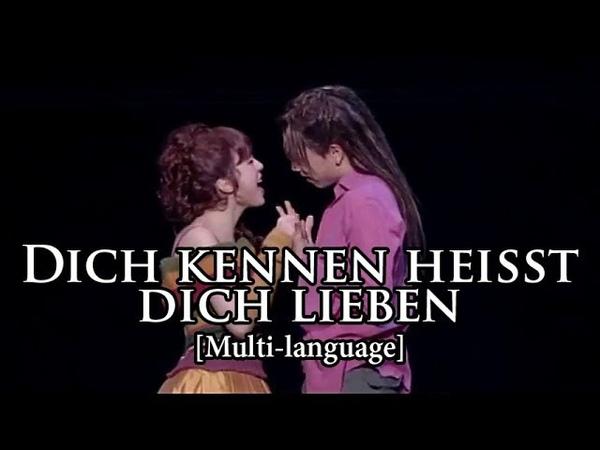 [New] Mozart! das Musical - Dich kennen heißt dich lieben (Multi-Language)