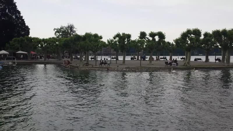 Konstanz Insel Mainau клип 15 15