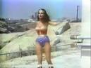 Technology /Transformation: Wonder Woman (1978-79) Дара Бирнбаум / Dara Birnbaum