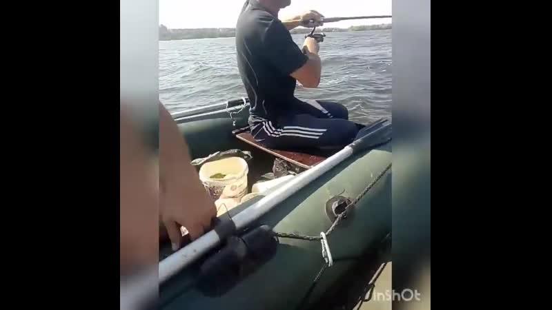 канів ловим ляща