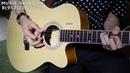 Обзор электроакустической гитары Elitaro E4040EQ N