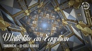 Tanukichi - Walk like an Egyptian (E-Coli Remix)