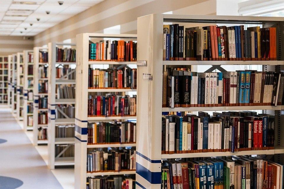Сотрудники одной из библиотек Некрасовки расскажут о творчестве писателя Федора Абрамова