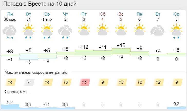 Весна вернется, но нужно чуть-чуть потерпеть. Все о погоде в Бресте на неделе