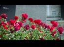 ДОНЕЦК Документальный фильм о жизни в тылу боевиков Донбасс Реалии