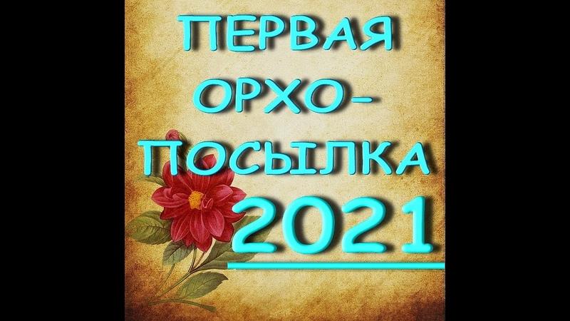 КАК ДОЕХАЛАПервая ОРХО-ПОСЫЛКА,2021,группа ORCHIDS-ECLAT.ОРХИДЕИ.