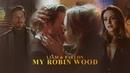 Fallon Liam | Youre my Robin Hood 2x11