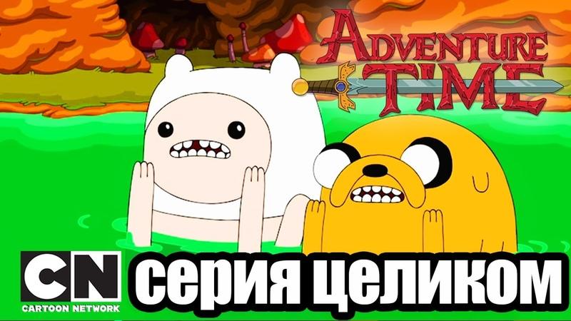 Время приключений За гротом Я Мечь серия целиком Cartoon Network