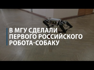 В МГУ создали первого российского робота-собаку