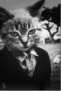 Личный фотоальбом Дениса Кузьмякова