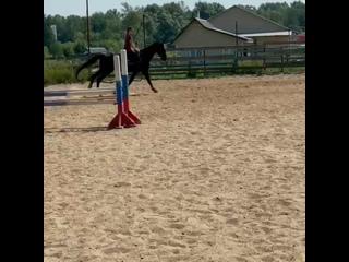 Horse Firetan video