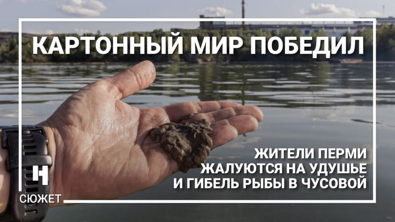 Картонный мир победил жители Перми жалуются на удушье и гибель рыбы в Чусовой