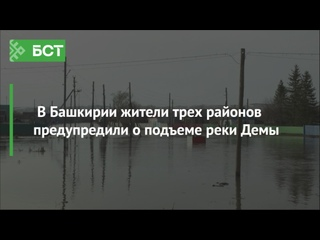 В Башкирии жители трех районов предупредили о подъеме реки Демы