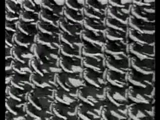 Parad_NSDAP_1938_goda_v_Njurnberge-space