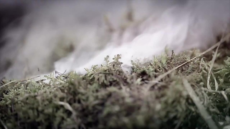 Vintersorg - Lagornas rov (2014)_Dark-World.ru