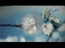 Будет светлым день 3-серия С.Бондаренко 2012г.