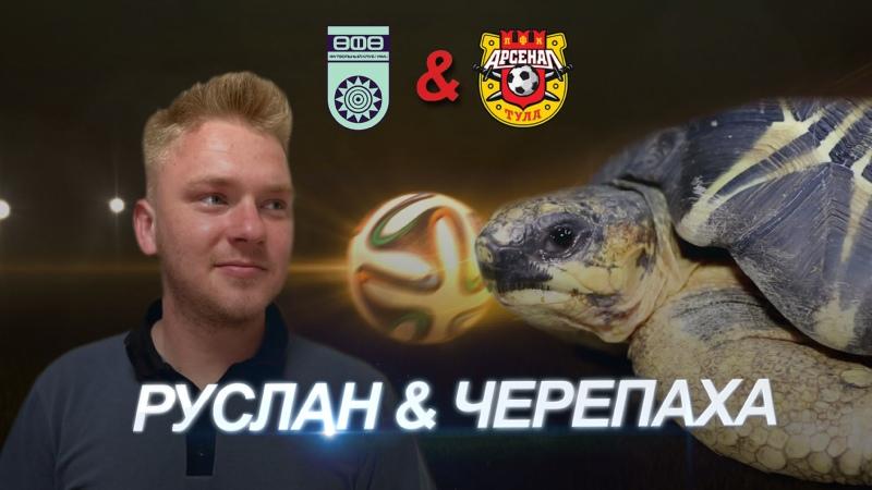 Черепаха сделала прогноз на матч тульского Арсенала с Уфой
