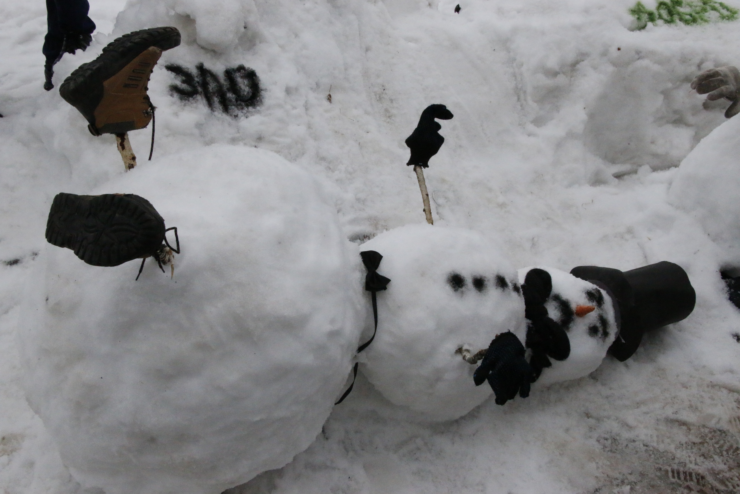 Волонтер скоро превратится …в снеговика