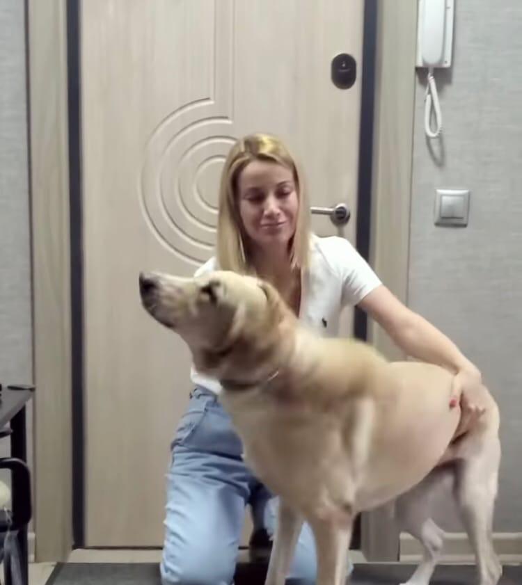 Ольга Орлова вывезла Сейшика с Сейшел