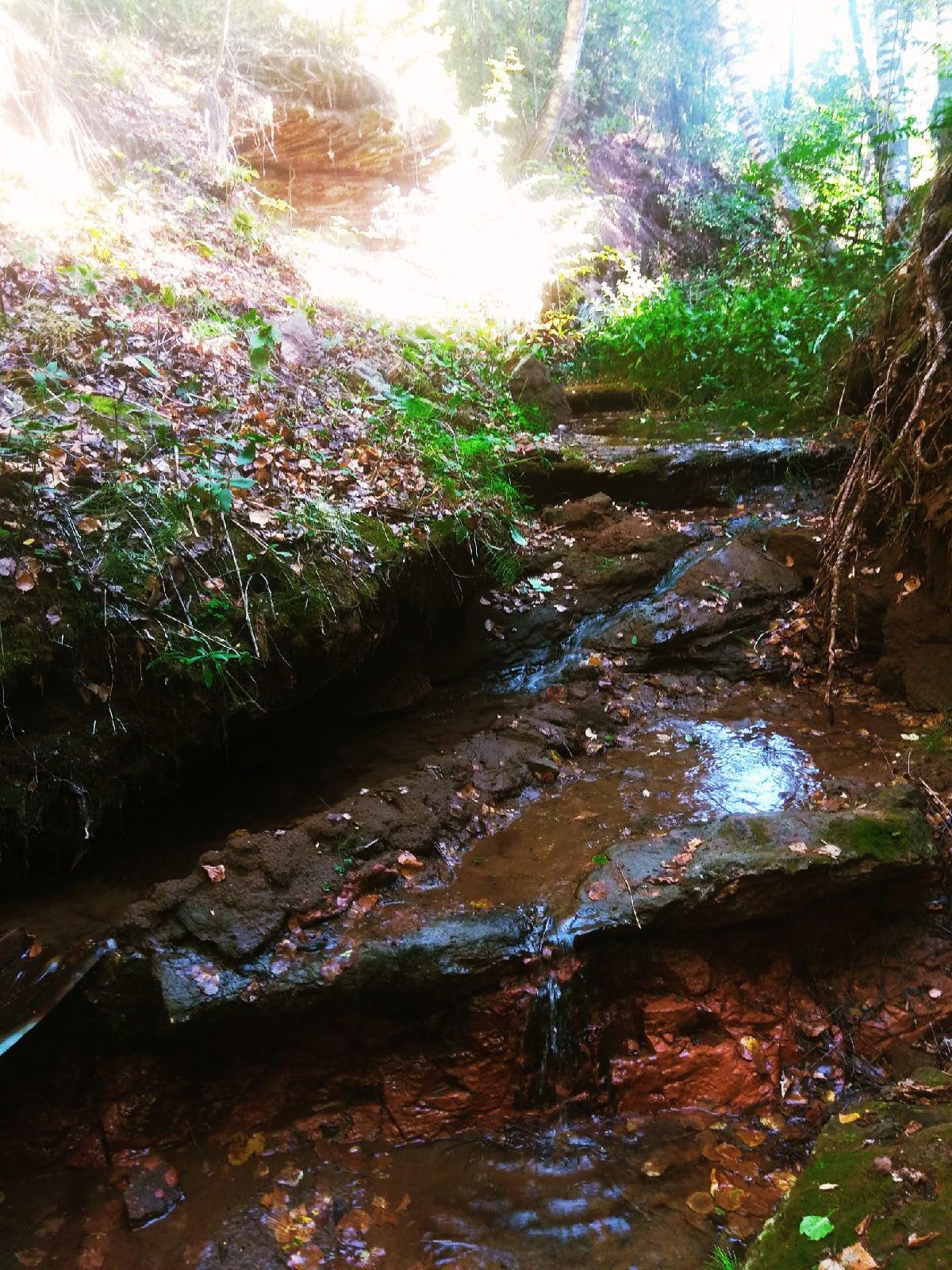 Природная красота села Малая Воложикья.У природы нет