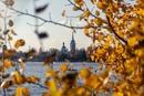 Строц Дмитрий   Санкт-Петербург   40