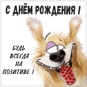 Сегодня поздравляем с Днем Рождения: Татьяна Балыбердина ([id260246961|@id260246961]),