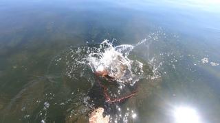 Рыбалка в любимом месте. Ангара 28 июля 2020
