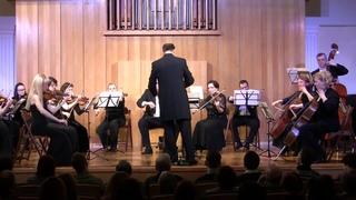 Моцарт - Маленькая ночная серенада КV525 I часть