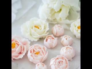 """Как сделать цветы Пиона и Розы из крема. / Наша группа в ВКонтакте: """"ULTRACAKES""""."""