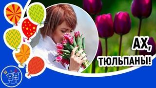 Дарите женщинам цветы песня. Тюльпаны. Красивое видео поздравление для женщины к празднику.