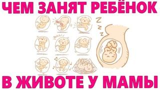 ЧТО ДЕЛАЕТ РЕБЕНОК В ЖИВОТЕ ВО ВРЕМЯ УЗИ | 5 интересных вещей которые вытворяет малыш во время УЗИ