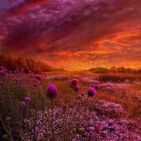 Фотография Оксаны Мертвищевой ВКонтакте