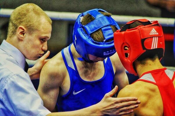 Кулешова сборная бокс фото