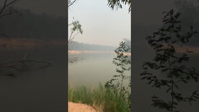 Дым над рекой Муррей ViralHog